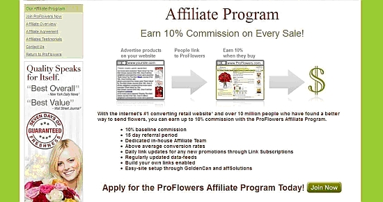 The Affiliate Program web page text