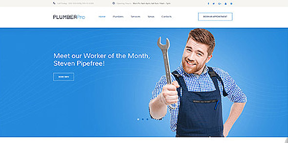 Plumber web theme from Entheosweb